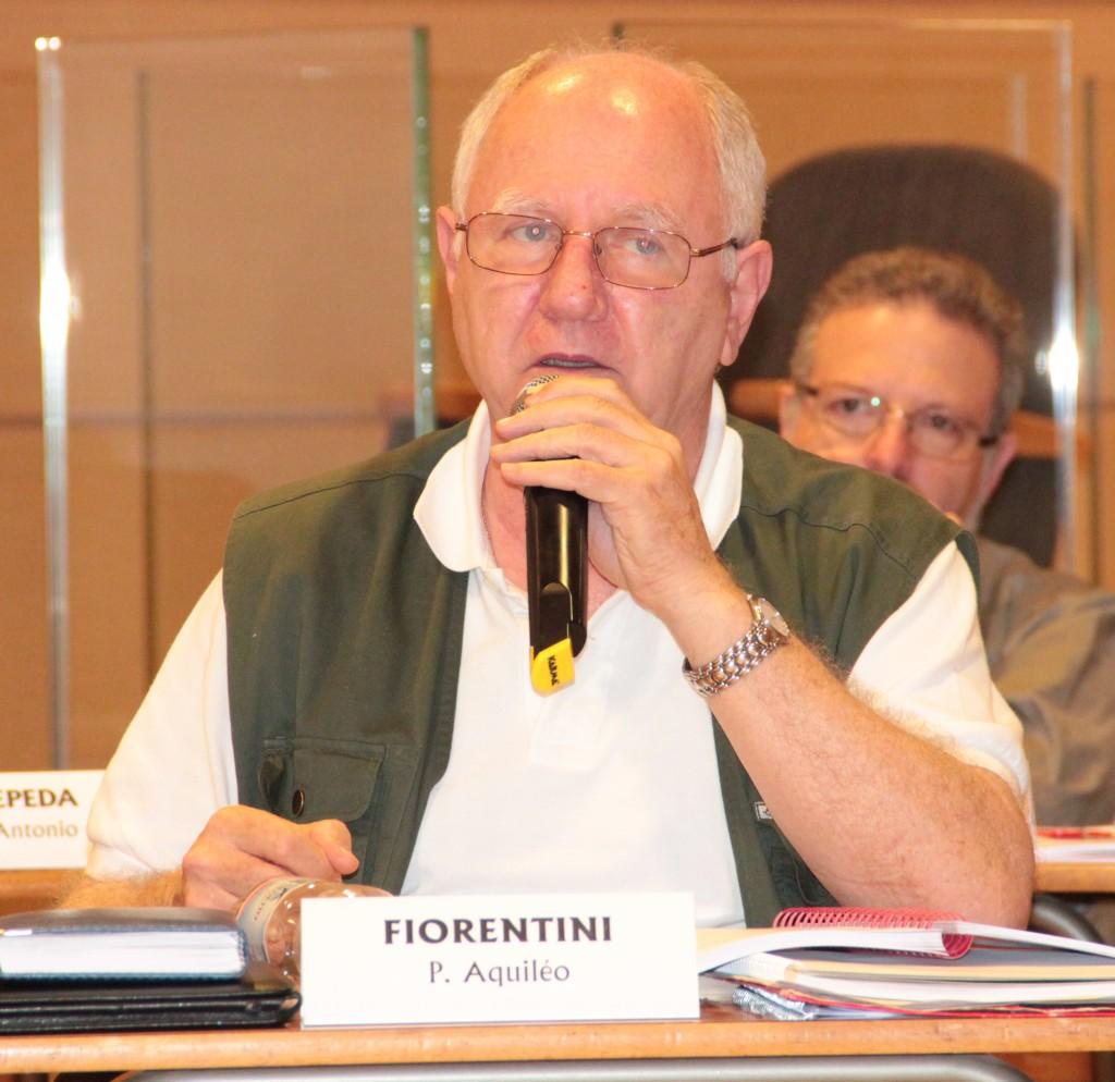 Momenti della discussione e dibattito in assemblea sul progetto continentale dell'Asia.